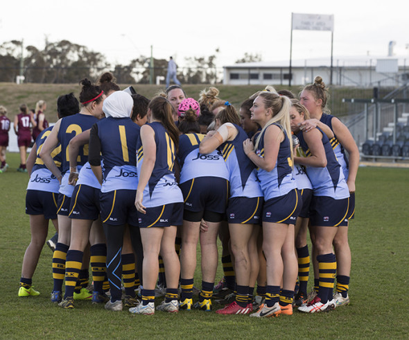 (Photo by Craig Golding/AFL Media)